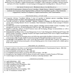Consulting-resume-1.1-red