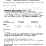 Consulting resume sample 2