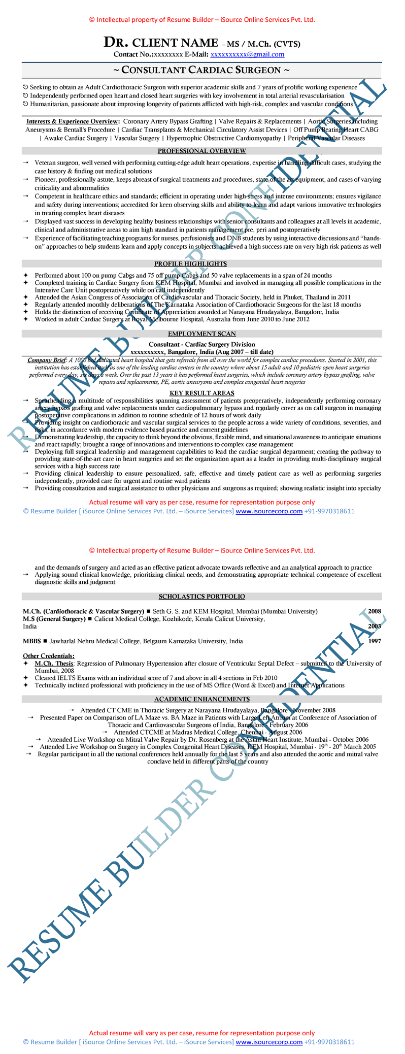 Executive Resume Linkedin Cover Letter Writing Visual Cv Ceo