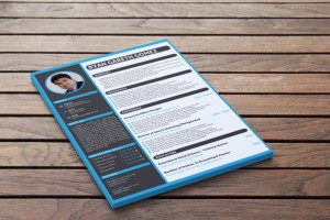 Visual Resume Sample