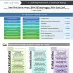 Visual Resume Sample