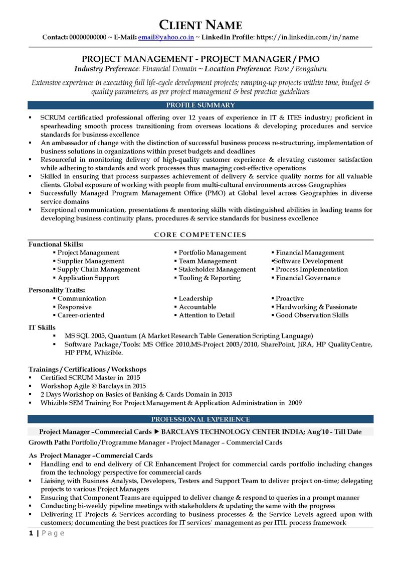 resume samples cv template cv sample pmo profile financial page 1