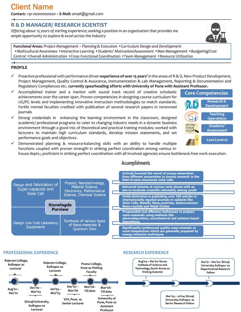 visual resume infographic resume graphic resume us uk india