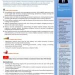 Microsoft Word - Senior-Management-Profile-Visual-Resume.docx