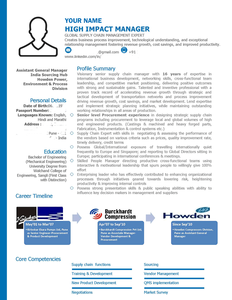 Senior Management Senior Level Executive Leadership Visual Resume Sample  C Level Resume